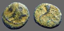 Ancient Coins - Phoenicia AE12 Hd of Zeus / Cornucopia