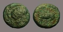 Ancient Coins - Macedon AE12 Athena in Corinthian Helmet / Horse stg. left