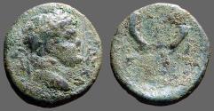 Ancient Coins - Titus AE17 Decapolis Gadara. Cornucopia