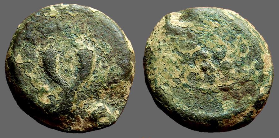Ancient Coins - Judaea Mattathias Antigonus AE25 Double Cornucopia / Lily