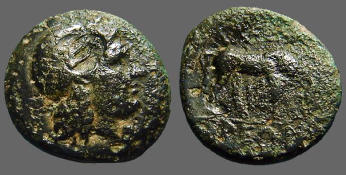 Ancient Coins - Troas, Alexandreia AE20 Hd of Apollo./ Horse grazing
