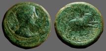 Augustus AE28 Sestertius Amphipolis Macedon.  Artemis Tauropolis riding bull  Rare.