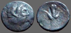 Ancient Coins - Cyrenaica AE23 Zeus Ammon / Silphium Plant