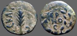 Ancient Coins - Porcius Festus AE prutah.  Palm Branch / Legend in wreath