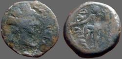 Ancient Coins - Carteia, Spain. AE22 Time of Augustus. Neptune w. dolphin & trident