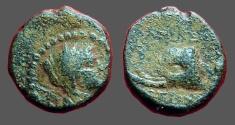 Ancient Coins - Seleucus IV AE15, Elephant hd left
