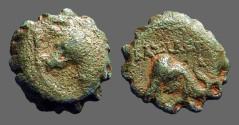 Ancient Coins - Seleukid, Demetrios I AE16 Horse head left / Elephant head rt. SG7028