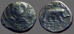 Ancient Coins - Seleukid  Antiochos III AE14 Macedonian shield / Elephant