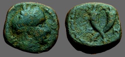 Ancient Coins - Aretas IV AE unit. Crossed Cornucopia.  Petra.   Monogram of Aretas IV in field.