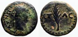 Ancient Coins - Trajan AE17 Palm branch ƐΤ / ΛƐ.  uncertain city