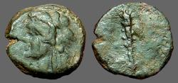 Ancient Coins - Sicily, Panormus AE12 Herakles in lionskin / Club of Herakes
