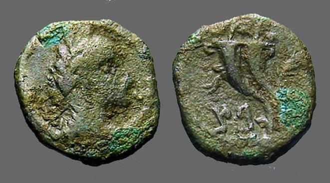 Ancient Coins - Aretas IV AE14 .9 BC- 40 AD, Parallel Cornucopia, Palm branch