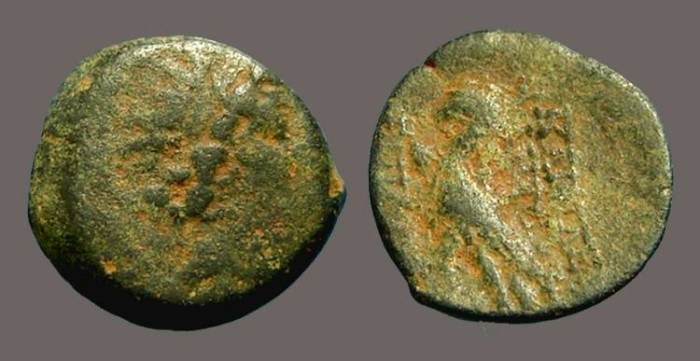 Ancient Coins - Antiochos VIII AE18, Rd Hd. of Antiochos right / Eagle standing left.