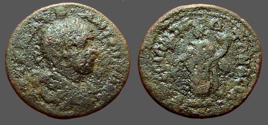 Ancient Coins - Elagabalus AE23 Tyche w. cornucopia, sacraficing w. patera.