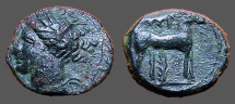 Ancient Coins - Zeugitania, Carthage Æ16 Hd of Tanit left / Horse stg rt in front of palm tree