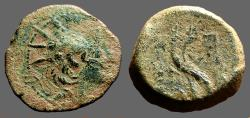 Ancient Coins - Alexander II Zebinas AE21 Antioch on the Orontes. 2 Cornucopia