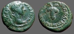 Ancient Coins - Caracalla AE17 Marcianopolis, Moesia Inferior.  Grape Cluster on tendril