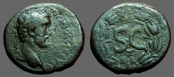 Ancient Coins - Antoninus Pius AE23 'as' Antioch on Orontes. SC within wreath.