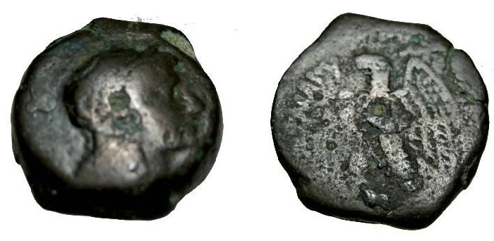 Ancient Coins - Ptolemaic Kings Ptolemy VI 180-145 BC AE22