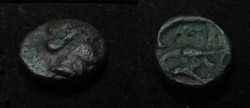 Ancient Coins - Moesia, Istros. ca Late 4th Century - Early 3rd Century BC. Æ 11mm