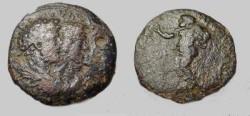 Ancient Coins - Seulecid & Pieria , Laedicea ad Mare