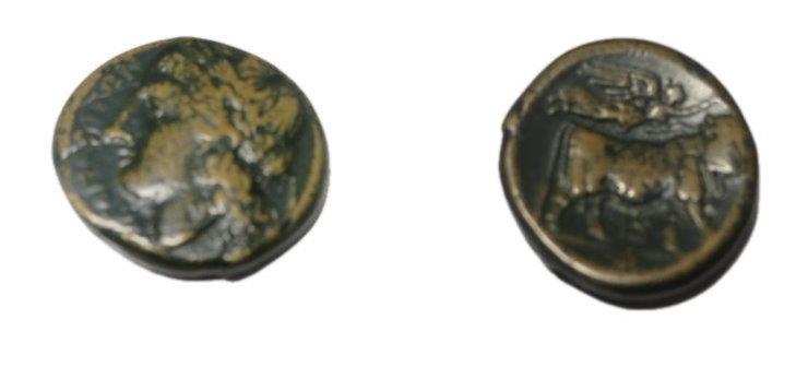 Ancient Coins - Campania, Neapolis  270-240 BC  AE19  5.77 gm