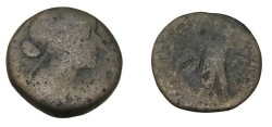 Ancient Coins - Ptolemaic Kingdon Cleopatra VII 51-30BC AE 80 Drachm of Alexandria
