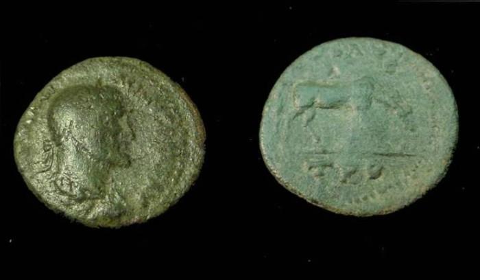Ancient Coins - Maximinus I  Troas 235-238 AD