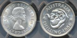 World Coins - Australia, 1956(m) One Shilling, 1/-, Elizabeth II (Silver) - PCGS MS64 (Ch-Unc)
