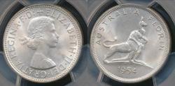 World Coins - Australia, 1954 Florin, 2/-, George VI (Royal Visit)(Silver)- PCGS MS63 (Ch-Unc)
