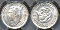 World Coins - Australia, 1950(m) One Shilling, 1/-, George VI (Silver) - PCGS MS64 (Ch-Unc)