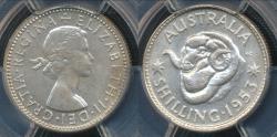 World Coins - Australia, 1953(m) One Shilling, 1/-, Elizabeth II (Silver) - PCGS MS64 (Ch-Unc)