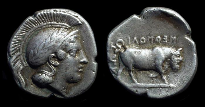 Ancient Coins - CAMPANIA, Neapolis. AR Didrachm (6.06g), c. 450-400 BC.