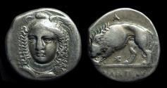 Ancient Coins - LUCANIA, Velia. AR Didrachm (7.32g) signed by artist Kleudoros.  Ex: Prospero collection.