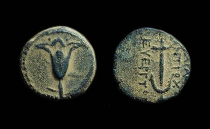 Ancient Coins - JUDAEA. John Hyrcanus I, 134-104 BC. Æ Prutah (2.67g).