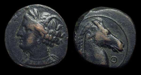 Ancient Coins - ZEUGITANA. Carthage. Æ 20mm (4.75g), late 3rd Century BC.