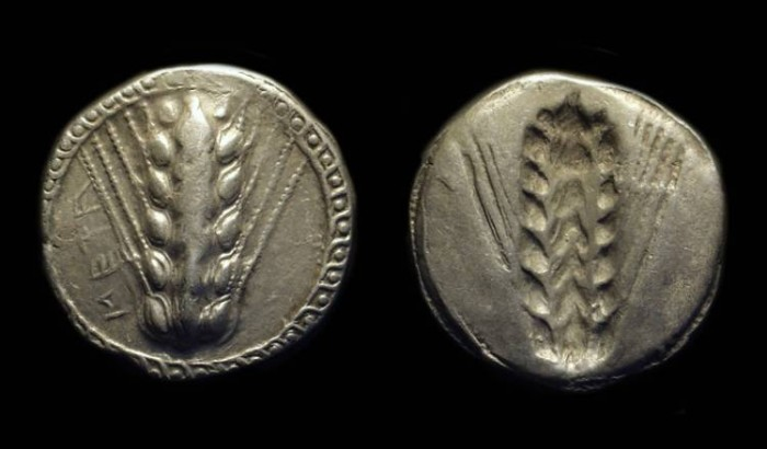Ancient Coins - LUCANIA, Metapontion. AR Stater (8.08g), c. 510-470 BC.