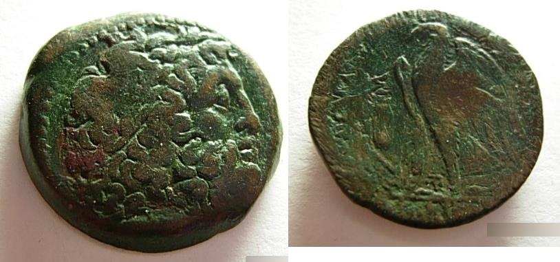 Ancient Coins - Ptolemaic Egypt, Ptolemy I, 311-283BC, AE28. Zeus/Eagle.