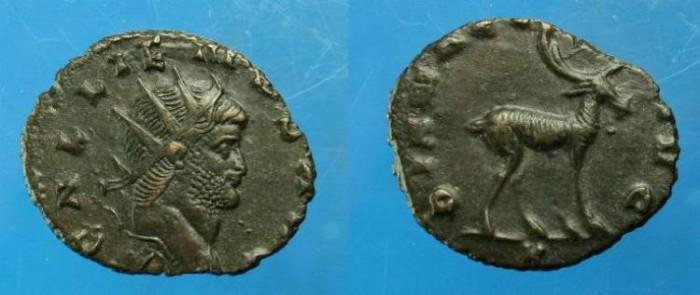Ancient Coins - Gallienus.  Ae ant.  C. 267-268 AD.