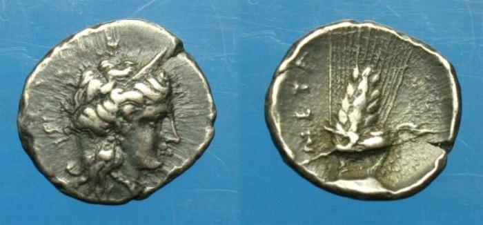 Ancient Coins - Lucania.  Metapontion.  Ar diobol.  C. 400-350 BC.  RARE.
