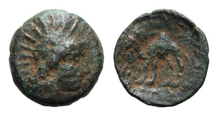 Ancient Coins - RARE Adiabene/Mesopotamia. Natounia. Helios. Camel. #7005