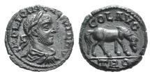 Ancient Coins - Gallienus, 253 - 268 AD, AE21, Troas, Grazing Horse