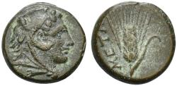 Ancient Coins - Lucania, Metapontion, 300 - 250 BC, AE12
