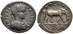 Ancient Coins - Severus Alexander, 222 - 235 AD, AE26, Alexandreia Troas Mint, Grazing Horse, Unpublished