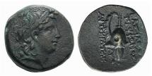 Ancient Coins - Seleukid Empire, Tryphon, 142 - 138 BC, AE18, Boeotian Helmet
