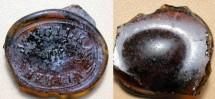 World Coins - BOTTLE SEAL -- NOT German glass coinage / notgeld / token