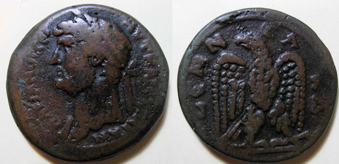 Ancient Coins - Hadrian, 117-138 AD, Alexandria, Egypt, AE drachm - eagle reverse