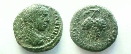 Ancient Coins - Elagabalus AE18 of Nikopolis, Moesia Inferior.  Bunch of grapes.