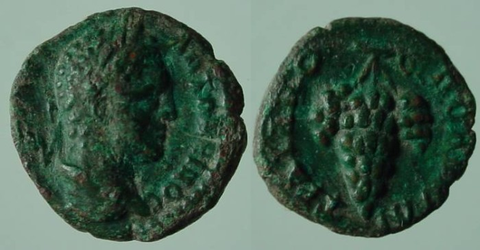Ancient Coins - Caracalla AE18 of Hadrianopolis, Thrace.  Bunch of grapes hanging from a filleted stem.