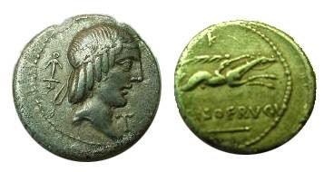 Ancient Coins - Calpurnia Piso Lf Frugi Denarius,  67 BC.  Horseman galloping right, C PISO L F FRVGI, ROMA below; letter or symbol above and-or below.